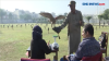 Puluhan Burung Elang Dirawat di Pusat Rehabilitasi