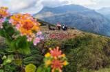 Sajikan Panorama Alam yang Indah, Lappa Laona Destinasi Andalan di Kabupaten Barru