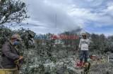 Pasca Erupsi Sinabung, Petani Bersihkan Tanaman Komoditinya