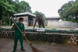 Taman Margasatwa Ragunan Kembali Dibuka Besok, Ini Syarat yang Wajib Dipenuhi Pengunjung