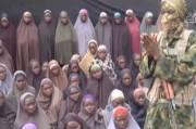 Teroris Boko Haram Gunakan Keledai Diikat Bom untuk Sergap Gubernur