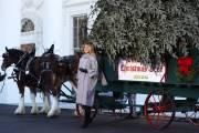 Gedung Putih akan Gelar Pesta Indoor, Warga AS Dihimbau Tetap di Rumah