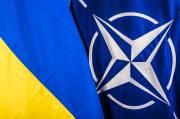Rusia: Rencana Ukraina Gabung NATO Tak Berguna, Hanya Perburuk Situasi