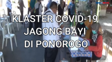 Klaster Jagong Bayi di Ponorogo, 48 Warga Dikarantina Mandiri