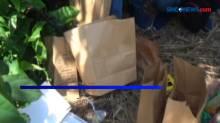 Jasad Bayi Ditemukan Terbakar di Tumpukan Ranting