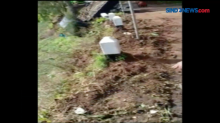 Detik-Detik Video Mobil Pikap Terjun ke Jurang di Lumajang