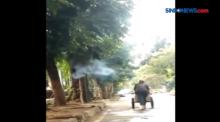 Kejadian Aneh, Sebuah Pohon Mengeluarkan Asap di Bandung