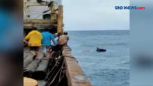6 Kru KLM Armada Bahari Mulya Diselamatkan Setelah Terapung Selama 27 Jam