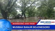 Banjir Rendam Permukiman Warga dan Kayu Jati di Bojonegoro