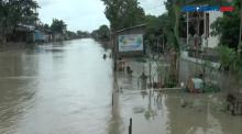 Banjir Rob Terjang Permukiman Pesisir Pantai Utara Pulau Jawa