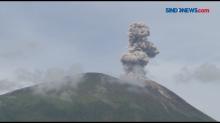 Gunung Ile Lewotolok Erupsi, Warga Diminta Waspada Banjir Lahar Dingin