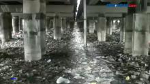 Kolong Tol Ir Wiyoto Wiyono Kian Memprihatinkan dengan Adanya Tumpukan Sampah