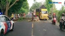 Mobil Tertimpa Pohon Tumbang di Banyuwangi, Satu Luka Patah Tulang