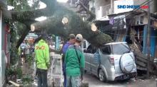 Angin Kencang di Kota Bandung, 4 Mobil Tertimpa Pohon Tumbang