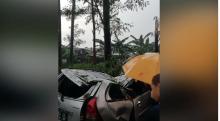 Curah Hujan Tinggi, Pohon Tumbang Timpa Mobil