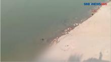 Ngeri! Puluhan Jasad Mengambang di Sungai Gangga