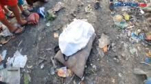Penemuan Jasad Bayi dalam Tas Gegerkan Warga Kelurahan Terjun