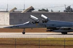 Jatuh dan Pilot Tewas, Taiwan Kandangkan Seluruh Jet F-5E Tiger II