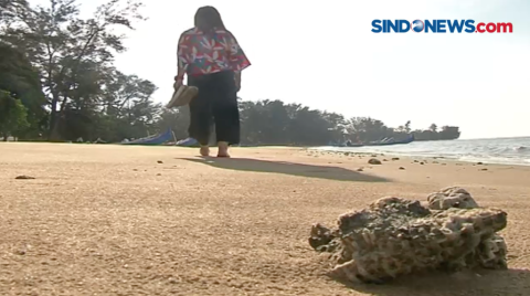 Video Terkini Dan Terbaru Wisata Pantai Sindonews
