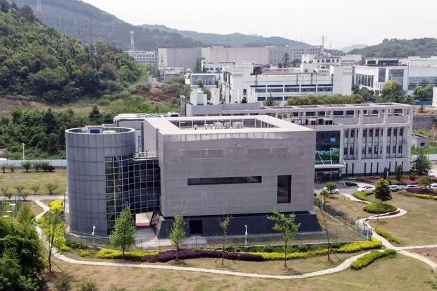 Laboratorium Virus Wuhan Punya 3 Jenis Virus Corona