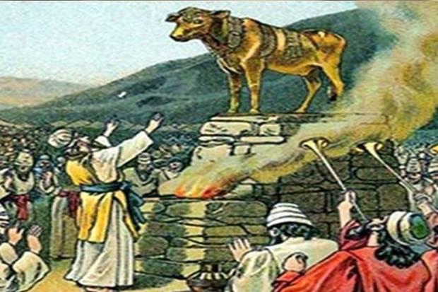 Saling Bunuh Umat Nabi Musa Setelah Penyembahan Sapi, Korban 70 Orang