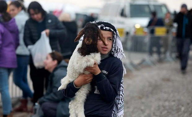 Israel Larang Warga Palestina Jual Kambing di Lembah Yordan
