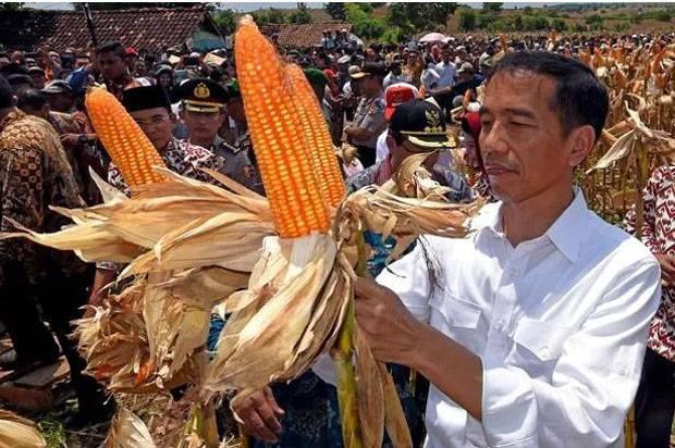 Jokowi Beberkan Industri yang Bertahan dari Pandemi, tapi Masih Impor