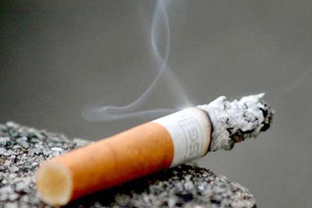 Ingin Bebas Asap, Selandia Baru Bakal Larang Penjualan Rokok