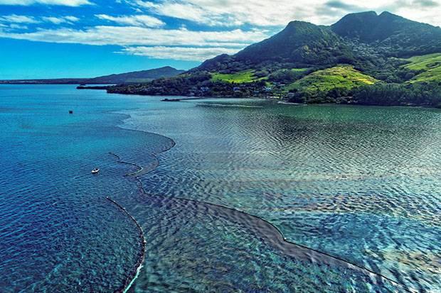 Negara G7 Sepakat Perjuangkan Target Lestarikan 30 Persen Lautan pada 2030