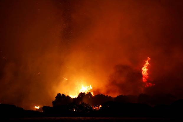 Erdogan: Kebakaran Hutan Sama Berbahayanya dengan Terorisme dan Pandemi