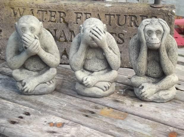 Jepang Ungkap Misteri Emoji Monyet Tutup Mata